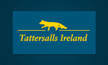 Visit Tattersalls Ireland Website