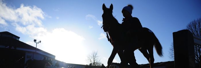 February National Hunt Sale