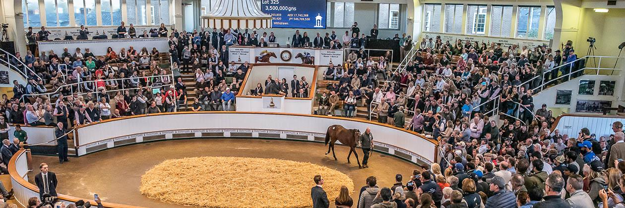 October Yearling Sale, Book 1