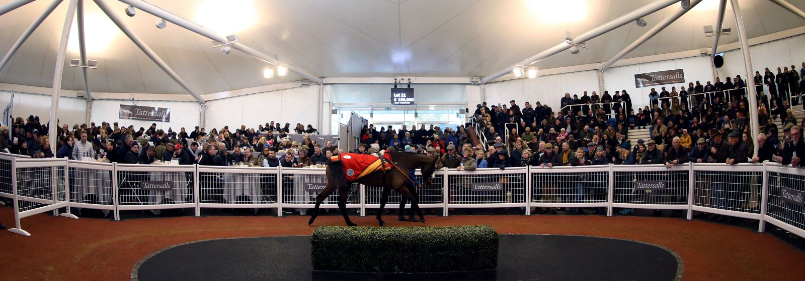 Tattersalls Cheltenham Sales Revised Date