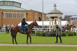 G V Viewing H I T0319 Tattersalls