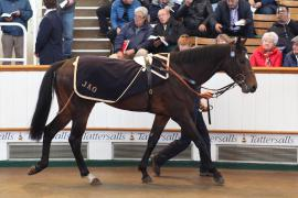 Lot  191 H I T349 Tattersalls