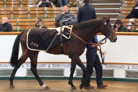 Lot  191 H I T361 Tattersalls