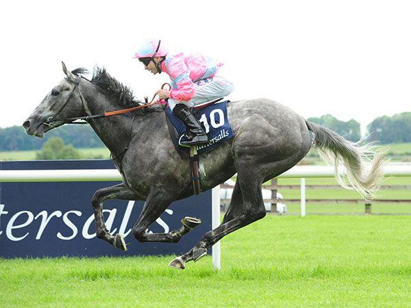 Tattersalls Irish 2000 Guineas Winner Phoenix of Spain was purchased at the December Foal Sale