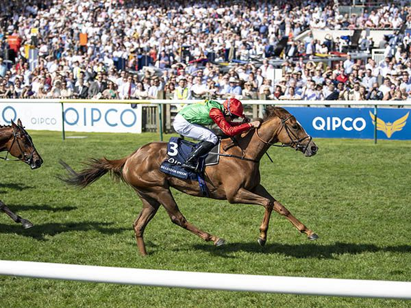 Billesdon Brook Winning the 1,000 Guineas. Her dam COPLOW looks one of the highlights of the December Sale.