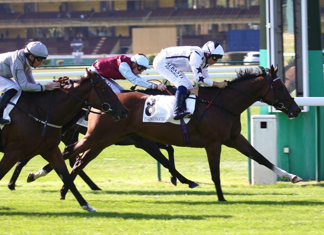 CORAZON winning at Longchamp