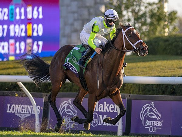 Tattersalls October Book 1 Purchase AUNT PEARL winning the Grade 1 Breeders' Cup Juvenile Fillies Turf