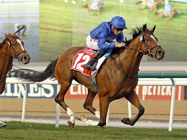Tattersalls Purchase BARNEY ROY winning the G1 Jebel Hatta