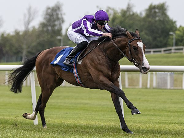 Point Lonsdale claims the 230th Book 1 Bonus with an impressive debut win at the Curragh