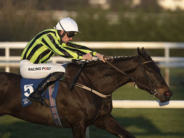 Dark Raven scored by seven and a half lengths at Leopardstown on debut for Willie Mullins