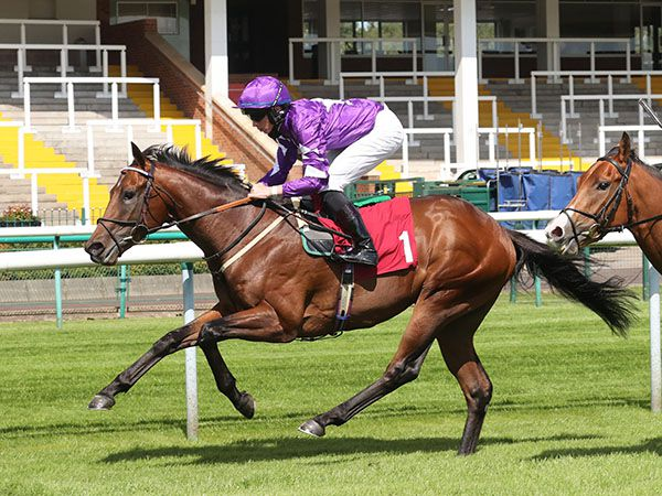 Devilwala Winning a £15,000 Craven Bonus at his first start