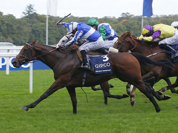 30,000 Gns Craven Breeze Up purchase DONJUAN TRIUMPHANT winning the Group 1 British Champions Sprint Stakes