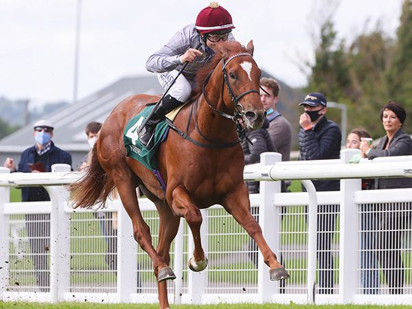 75,000 guineas Book 2 purchase EBRO RIVER is the highest rated two-year-old in Europe