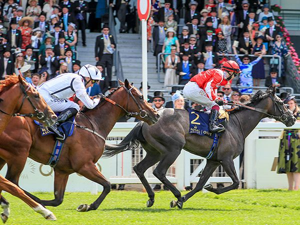 Eldrickjones finishing second in the Group 2 Coventry Stakes at Royal Ascot
