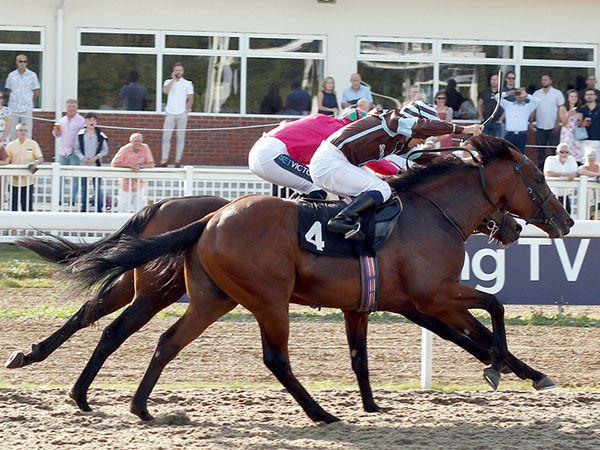 Hector Loza Winning at Chelmsford