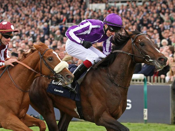 Camelot gets his head in front of French Fifteen