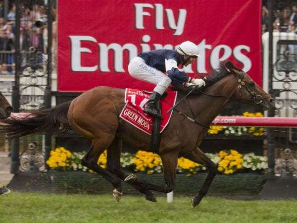 Green Moon winning the Melbourne Cup