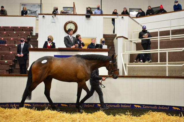 Lot 289 selling for €280,000