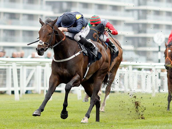 Nasaiym Winning the third £15,000 Craven Breeze Up Bonus