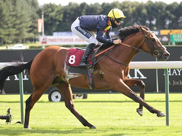 Rhoscolyn wins easily and earns a £25,000 Book 1 Bonus