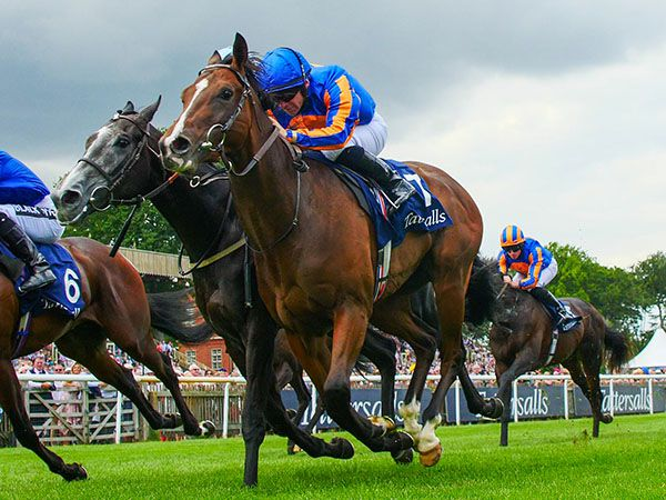 Royal Lytham winning the Group 2 Tattersalls July Stakes at Newmarket