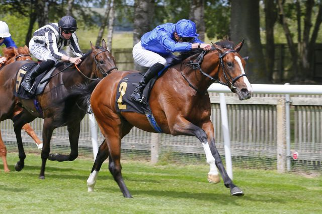 Dhahabi winning at Newmarket