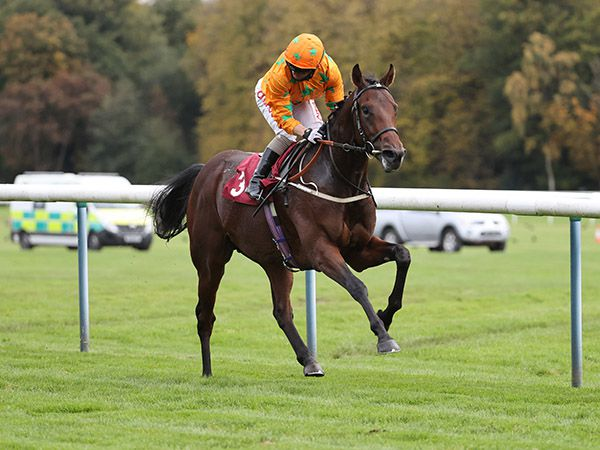 Kings Prince scores on debut at Haydock