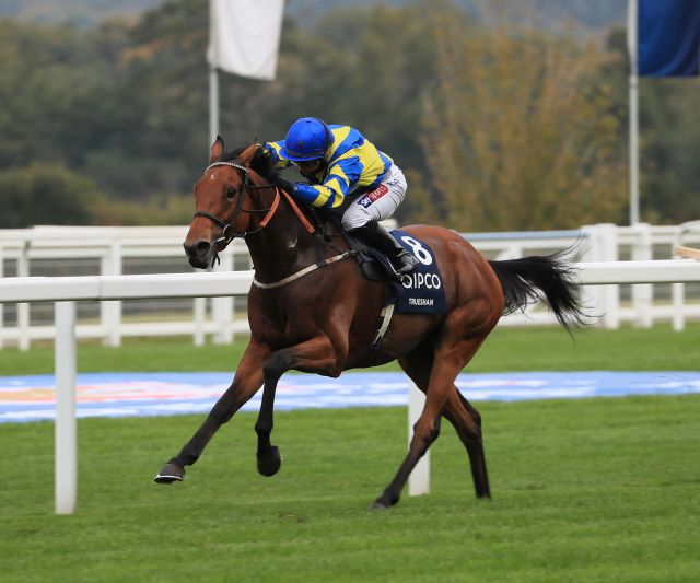 Group 2 British Champions Long Distance Cup winner TRUESHAN was purchased at the Guineas Breeze Up Sale for 31,000 guineas