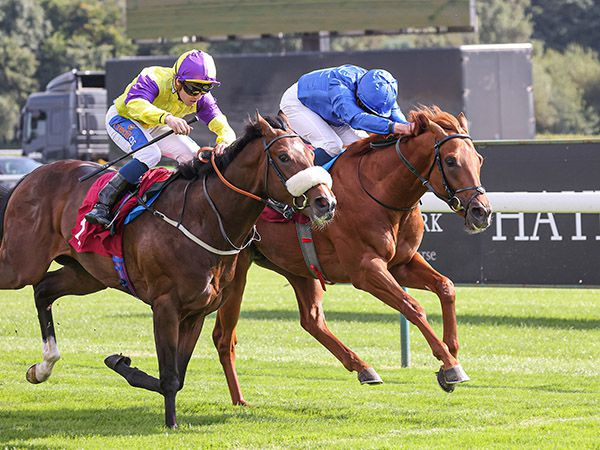 New Kingdom claimed the third £20,000 October Book 1 Bonus of the day at Haydock
