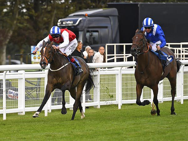 Star In The Making Winning at Salisbury
