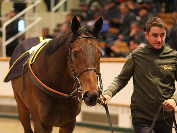 Lot 1149: Salute The Soldier (GER)