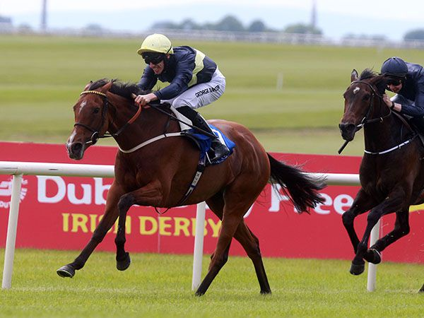 Group 1 winner Thistle Bird will be amongst the lots on offer