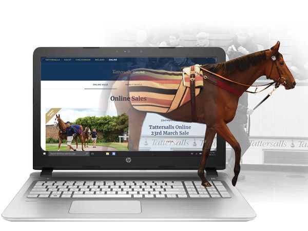 The Tattersalls Online 23rd March Sale will be the third sale conducted on the Tattersalls Online platform.