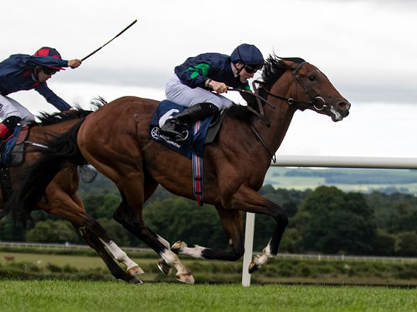 Unconquerable winning at Naas