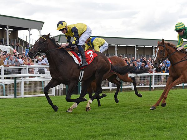 With Promise Winning at Yarmouth