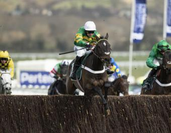 CHANTRY HOUSE, dual Grade 1 winner, was purchased at the August National Hunt Sale for €26,000 in 2017
