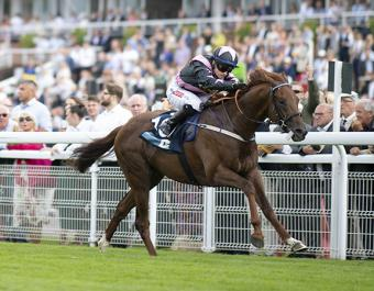 Sisters In The Sky breaks his maiden at Goodwood