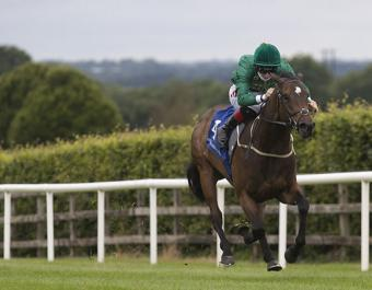 Geocentric stretches clear to win at Navan