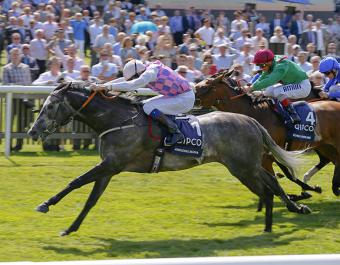 AMAZING MARIA winning the G1 Falmouth Stakes