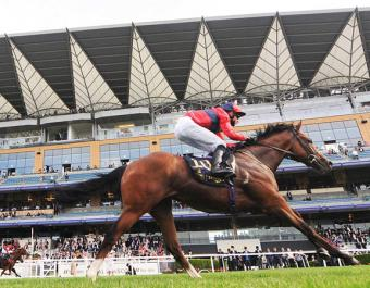 10,000 guineas purchase Chipotle won the Listed Windsor Castle Stakes at Royal Ascot