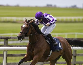 Dual Group 1 Tattersalls Gold Cup winner Magical