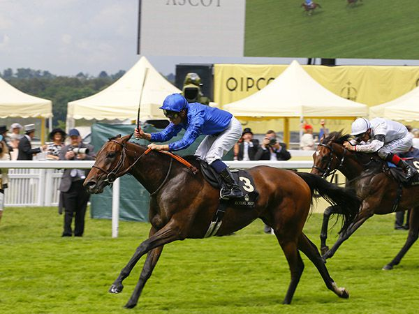 Usherette Winning the G2 Duke of Cambridge Stakes at Royal Ascot.