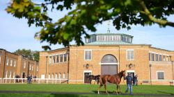 UK Tattersalls Ltd