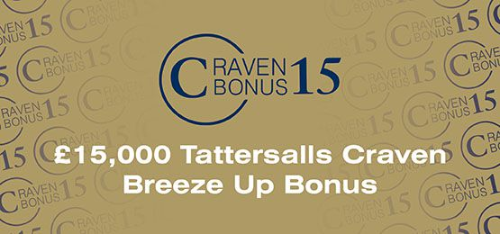 Craven Breeze Up Bonus
