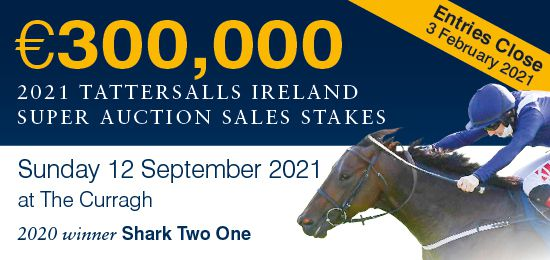 €300,000 Tattersalls Ireland Super Auction Sales Race