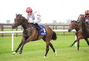 Nope Winning at Fairyhouse