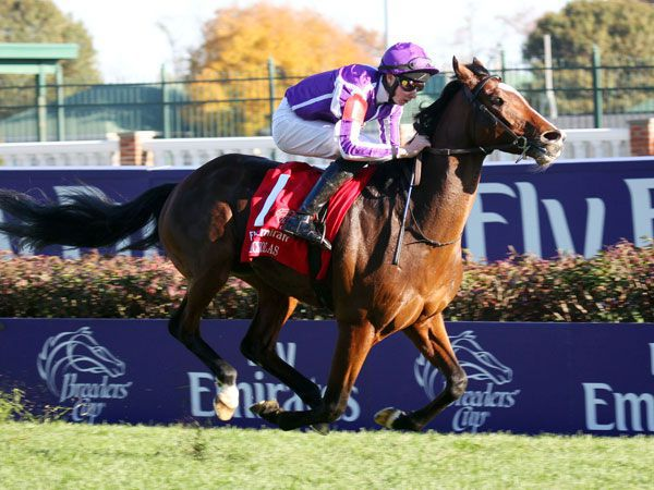 St Nicholas Abbey winning the G1 Breeders' Cup Turf