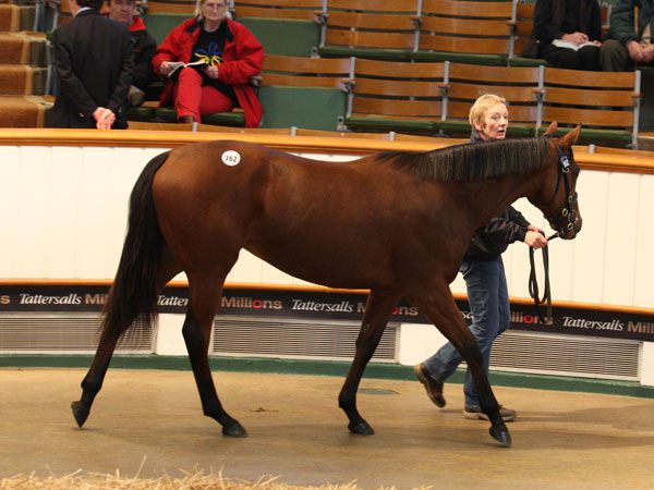 Lot 162: Acclamation (GB) / Abington Angel (GB)