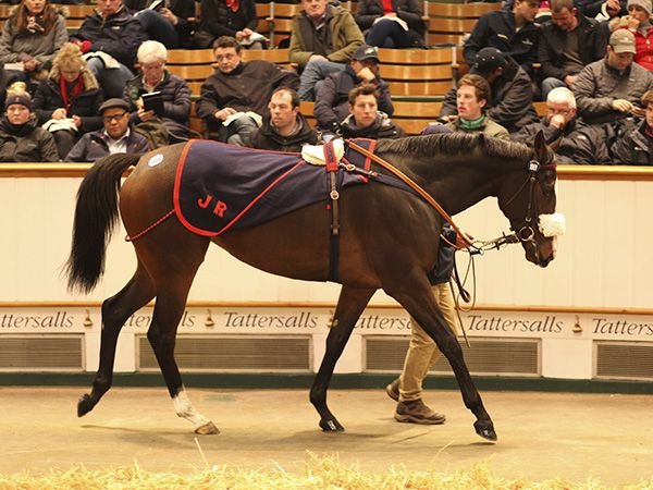 Lot 1861: Quiet Reflection (GB)