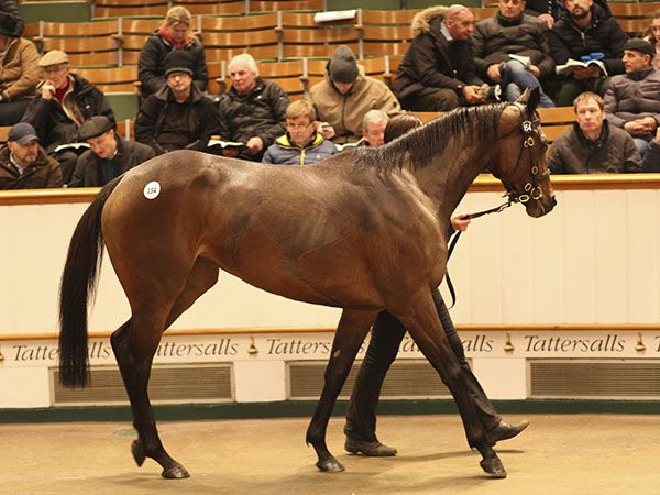 Lot 154: Key To My Heart (IRE)